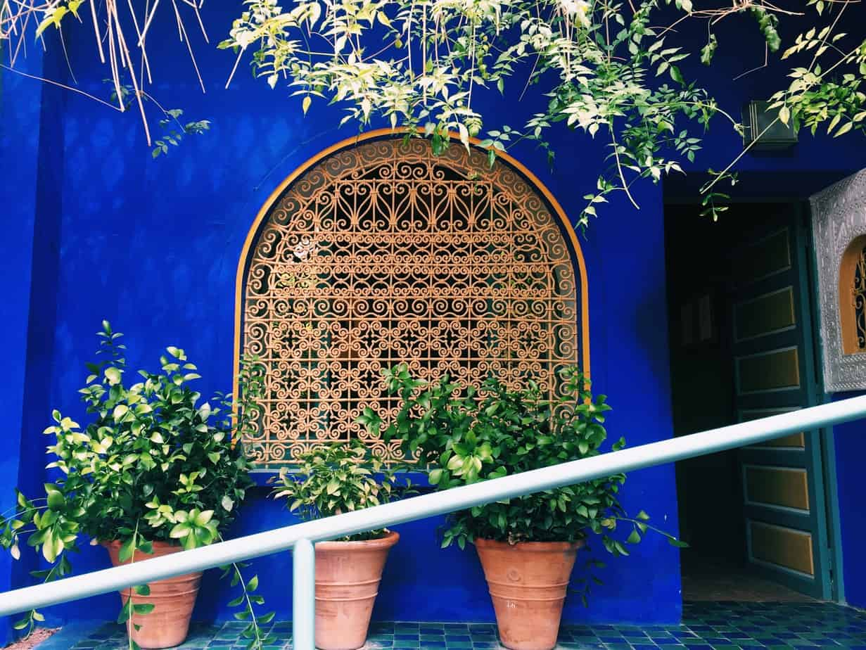Jardin majorelle marrakech sarah c c bence for Jardin majorelle