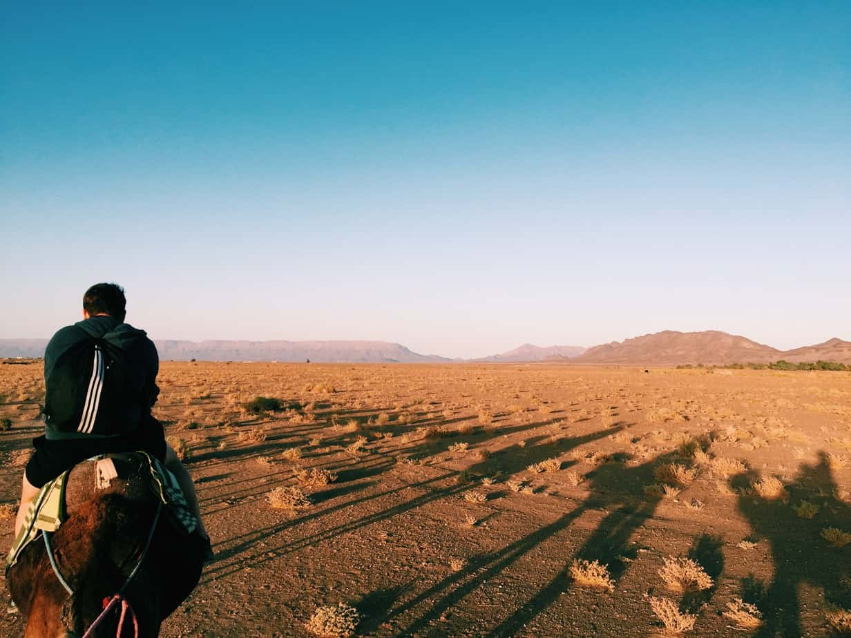 desert essay The desert essays: over 180,000 the desert essays, the desert term papers, the desert research paper, book reports 184 990 essays, term and research papers available.